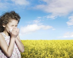14 Proactive Steps Before Allergies Begin